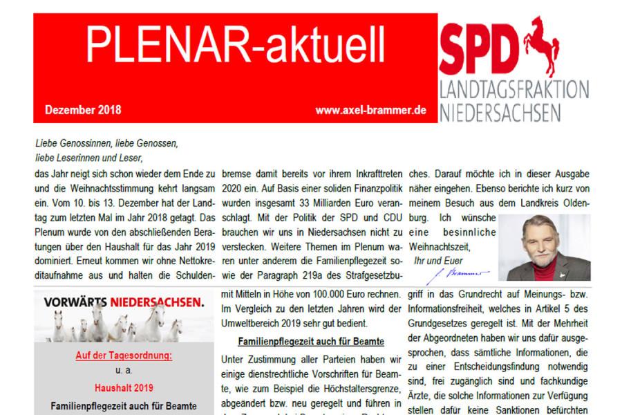 """""""Plenar-aktuell"""" Dezember 2018"""