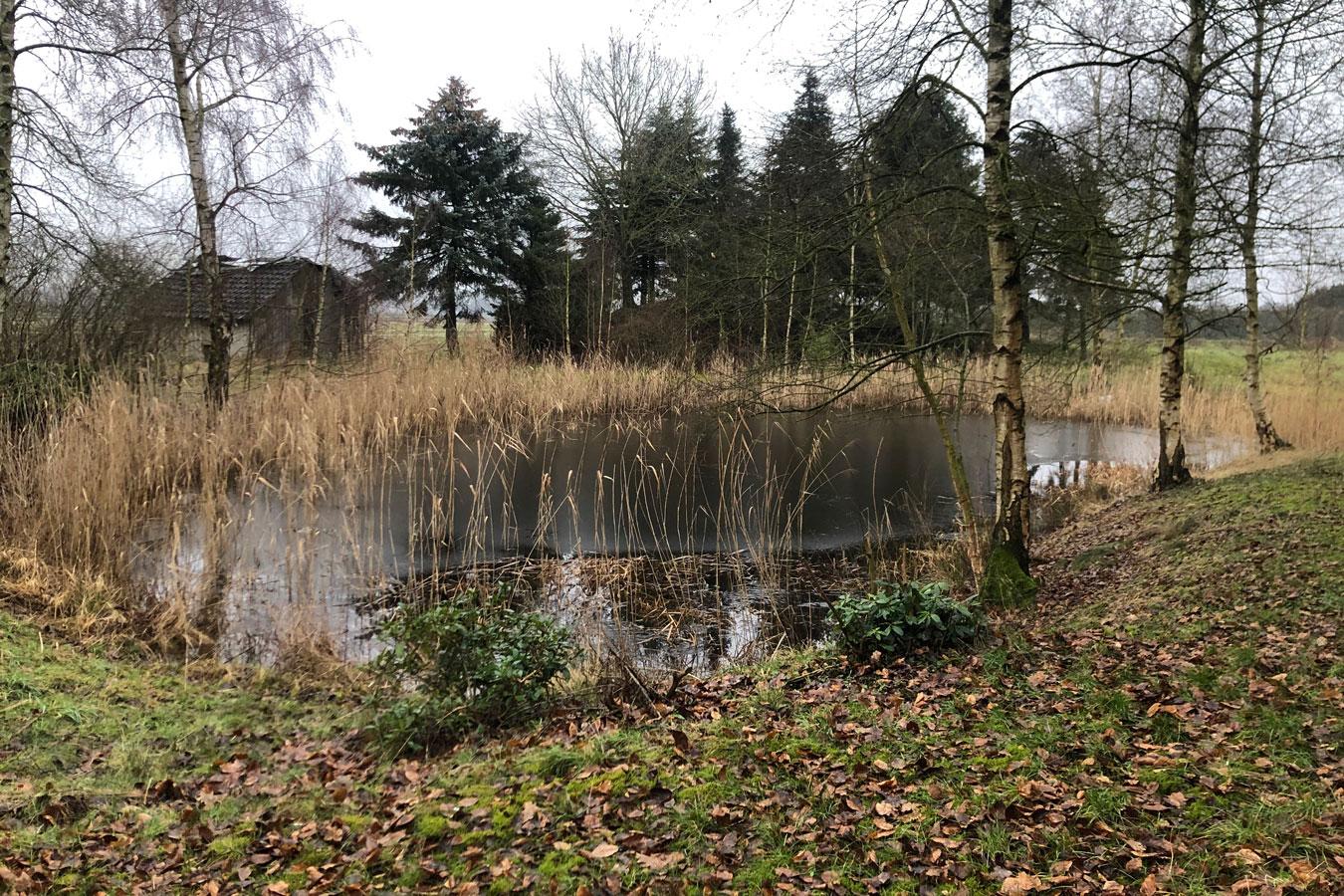 Teich auf dem Gelände
